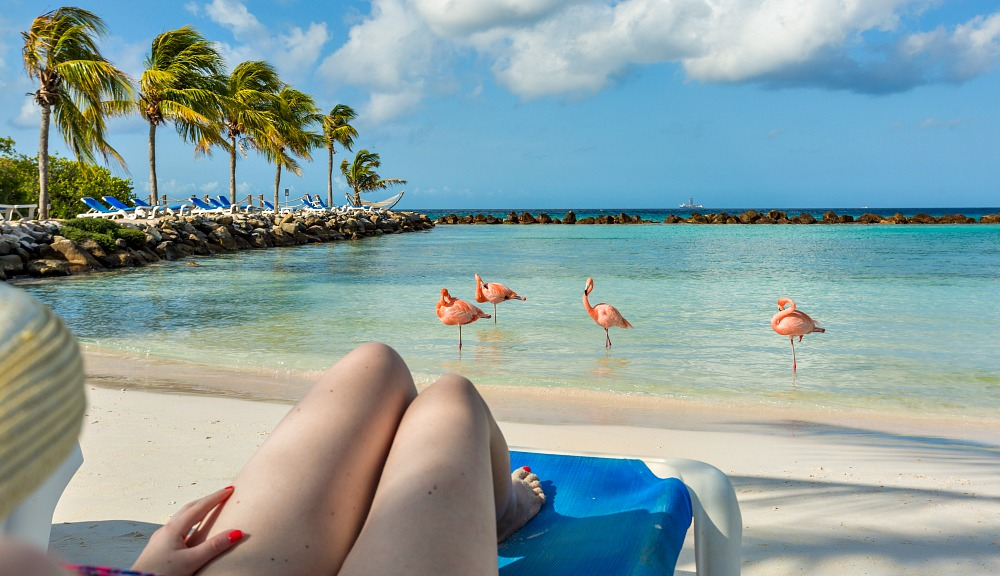What To Pack For Aruba 6 Things To Bring On Your Trip