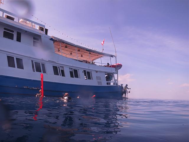 Liveaboard Diving Travel Essentials + Giveaway!