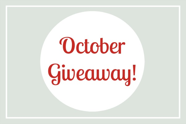 October Giveaway: Win this Awesome Packing Organizer!