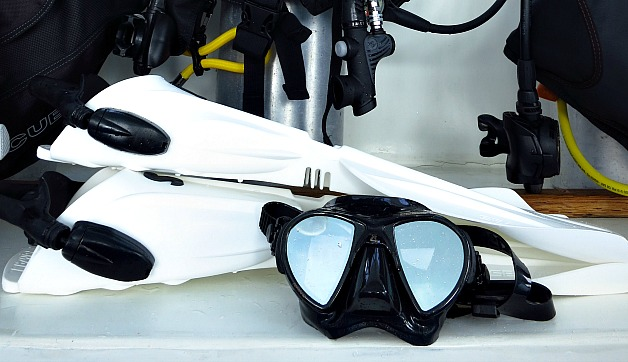 5 Scuba Diving Essentials for the First Time Diver