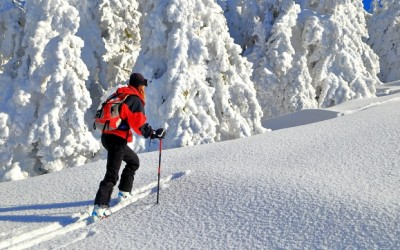 Ski Essentials for a Winter Vacation