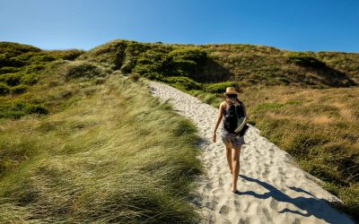 What to Pack for a Camping Trip in New Zealand