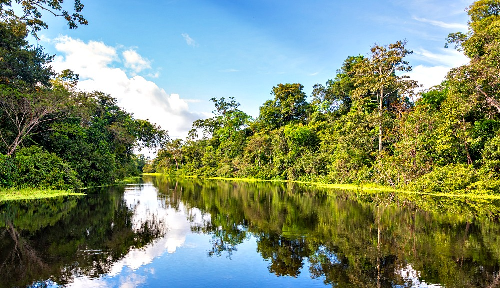 What to Wear in the Amazon Rainforest: A Packing List