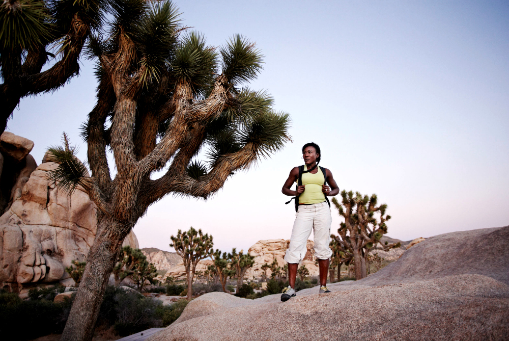 What to Pack for Joshua Tree National Park: Clothing, Essentials, and Gear